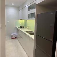 Cho thuê căn hộ cao cấp 1 phòng ngủ D' Capitale, đầy đủ nội thất cao cấp, siêu rẻ 11 triệu/tháng
