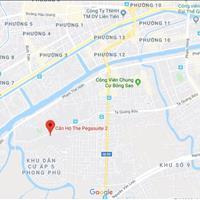 Dự án căn hộ hot nhất cuối năm The Pegasuite 2 mặt tiền đường Tạ Quang Bửu, Quận 8