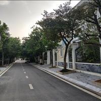 Mở bán lại một loạt đất Nam Vĩnh Yên giá tốt nhất từ chủ đầu tư
