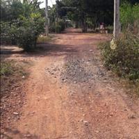 Cần bán đất tại xã Tân Định, huyện Bắc Tân Uyên, Bình Dương, giá đầu tư