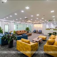 Chính chủ cho thuê văn phòng trọn gói 10, 15, 20, 25, 30m2 tại tòa nhà hạng A Handico 6 Thanh Xuân