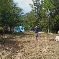 Bán lô đất đẹp chính chủ tại đường Trần Hưng Đạo, thị trấn Dương Đông, Phú Quốc, Kiên Giang