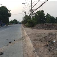 Bán đất nền dự án Bình Chánh - Hồ Chí Minh giá 2 tỷ