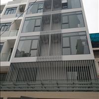 Chính chủ cần cho thuê căn hộ Studio đường Bùi Đình Tuý, Bình Thạnh, giá rẻ