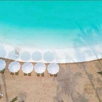 Shophouse Vinhomes Ocean Park (VHOP) 100m2 - 300m2 - 500m2 - 1000m2, cho thuê rẻ