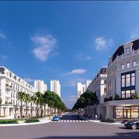 Liền kề biệt thự Louis City Hoàng Mai, cách Phố Cổ chỉ 6km