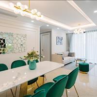Chuyên cho thuê căn hộ Vinhomes D' Capitale Trần Duy Hưng giá chỉ từ 10 triệu/tháng