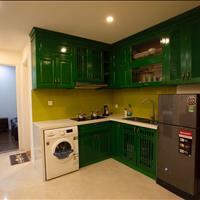 Nhượng lại căn hộ văn phòng Vinhomes D' Capitale - Giá chỉ 15,7tr/m2