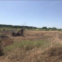 Bán 6ha đất giá rẻ nhất mặt tiền kinh tế mới, thị xã La Gi