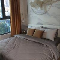 Căn hộ cao cấp D-Homme mặt tiền Hồng Bàng 1 phòng ngủ giá chỉ từ 55 triệu/m2