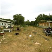 Cho thuê đất diện tích 2800m2, mặt tiền Hùng Vương