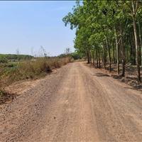 Bán đất 3,3 sào xã Bình An, huyện Long Thành, Đồng Nai