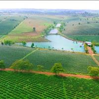 Chỉ 2,9 triệu/m2, sở hữu đất nền rẻ nhất thành phố Bảo Lộc, 135m2 full thổ cư, sổ sẵn