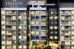 Dự án Căn hộ Celesta Rise Nhà Bè - ảnh tổng quan - 5