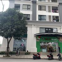 Chính chủ gửi bán 2 căn Shophouse thương mại khu đô thị Times City rẻ nhất thị trường