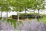 Dự án chung cư BID Residence - ảnh tổng quan - 16