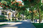 Dự án Hà Tiên Venice Villas - ảnh tổng quan - 8