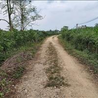 Gia đình cần bán gấp 12 sào Sông Ray, Cẩm Mỹ, Đồng Nai