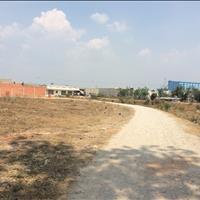 Cho thuê 20000m2 (2ha) làm trang trại tại Quảng Nam