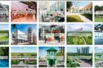 Dự án Sky Oasis Ecopark - ảnh tổng quan - 11