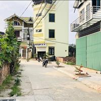 Cần bán 67m2 đất ngõ ô tô trung tâm xóm 4 Đông Dư, Gia Lâm