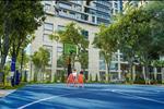 Dự án Hado Charm Villas - Hà Đô Dragon City - ảnh tổng quan - 15