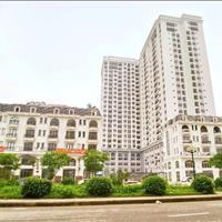 Căn hộ thông tầng 5 phòng ngủ view siêu đẹp tại dự án TSG Lotus Long Biên