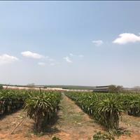 Bán đất Bắc Bình - Bình Thuận giá 610 triệu