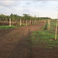 Đất vườn diện tích 5150m2, giá 2,3 tỷ, gần Quốc lộ 1A
