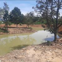 11000m2, suối chạy giữa vườn cách trung tâm thành phố Bảo Lộc 15km