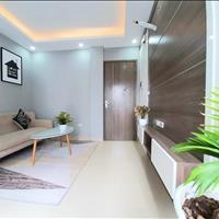 Mở bán chung cư mini view hồ Đền Lừ - Tân Mai - Lương Khánh Thiện 28-35-50m2 ngõ ô tô đỗ cửa ở ngay