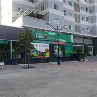 Cần bán căn hộ Thái Sơn (Tân Tạo 1) ngay chợ Bà Hom, KCN Tân Tạo, sổ hồng, ngân hàng cho vay 70%