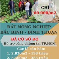Bán đất Bình Thuận gần QL1A, KDL Bàu Trắng giá chỉ 60.000đ/m2. Cơ hội đầu tư sinh lời 100%