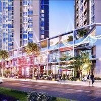 Bán nhà phố thương mại shophouse mặt tiền đường Nguyễn Lương Bằng Quận 7 - TP Hồ Chí Minh giá 9 tỷ