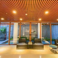 Cho thuê căn hộ cao cấp mới 100%, bếp tách biệt phòng ngủ (75m2) và 2 phòng ngủ 100m2
