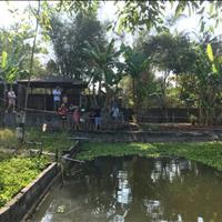 Sang nhượng khu vườn thú sinh thái gần biển Hồ Tràm - 2600m2
