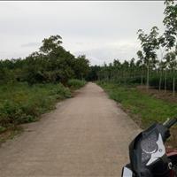 Cần bán gấp đất sát khu công nghiệp Đồng Xoài 1 thành phố Bình Phước đã có sẵn thổ cư - 0938758562