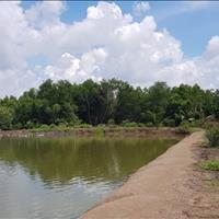 Bán 1000m2 đất Phước Vĩnh Đông, Cần Giuộc, Long An 860 triệu