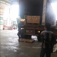 Cho thuê kho tại KCN Vĩnh Lộc, bao gồm bốc xếp, bảo vệ và quản lý hàng hoá, đa dạng diện tích