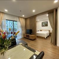 Cho thuê căn hộ 1 phòng ngủ Republic Plaza mới nhận nhà, nội thất full