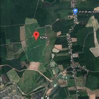 Bán đất nông nghiệp (CLN), diện tích lớn Tân Biên, Tây Ninh