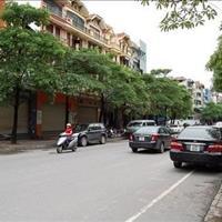 Bán nhà mặt phố Trần Điền, Thanh Xuân, 50m2, 5 tầng, 15 tỷ