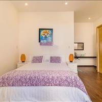 Bán căn hộ Indochina Riverside Towers 2 phòng ngủ, giá 4,x tỷ
