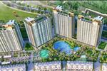 Dự án Hồ Tràm Complex - ảnh tổng quan - 27