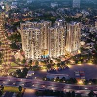 Bán căn hộ thành phố Thái Nguyên - Thái Nguyên giá 1.00 tỷ