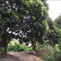 Bán đất dân 3251m2 thuộc thôn Khe Khoai xã Thống Nhất - Hoành Bồ