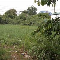 Bán đất nền dự án Liên Phường khu dân cư Kiến Á Quận 9 - Hồ Chí Minh giá 19 tỷ