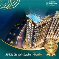 Bán bất động sản khác quận Vũng Tàu - Bà Rịa Vũng Tàu giá 1.70 tỷ
