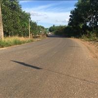Bán đất (10x98m) mặt tiền đường nhựa Phước Bình, Long Thành, Đồng Nai