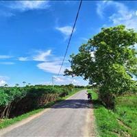 Siêu phẩm đất xã Minh Hòa huyện Dầu Tiếng 1000m2 chỉ 380tr, xây nhà nghỉ dưỡng, trồng cây ăn trái